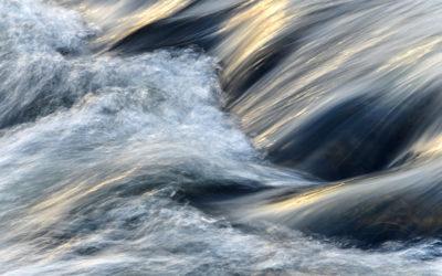 Wasser als Lebensgrundlage